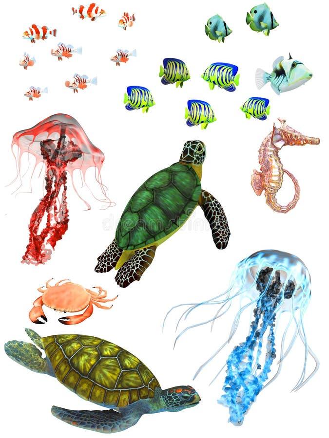 Download Underwater animals stock illustration. Image of tropicalfish - 23280033