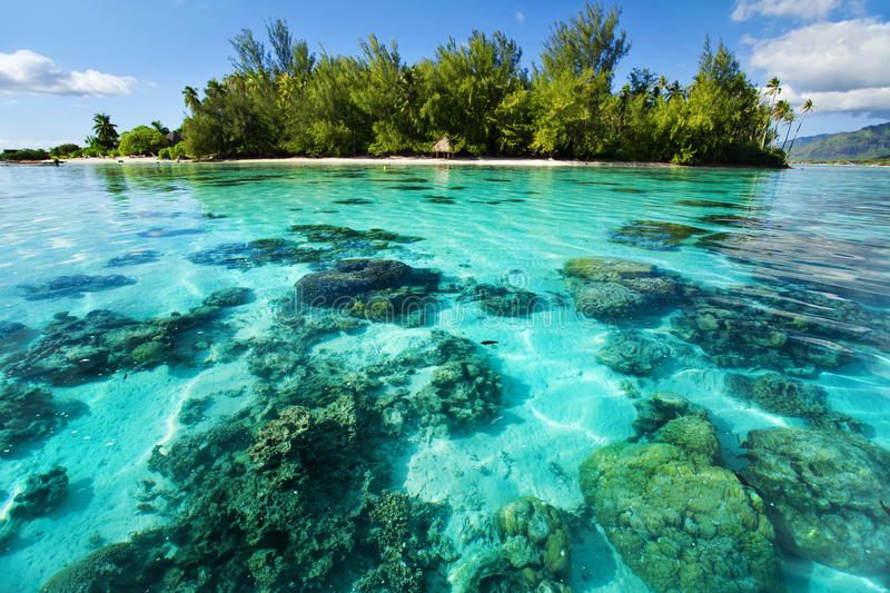 Underwater coral reef next to tropical island royalty free stock photos