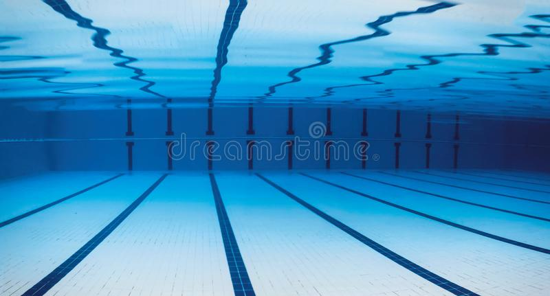 olympic swimming pool underwater. Perfect Pool Download Underwater Empty Swimming Pool Stock Image  Of Olympic  Lines 113669505 On Olympic Pool W