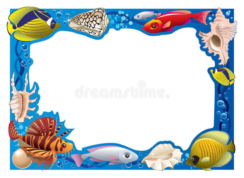 Underwater Frame Royalty Free Stock Image