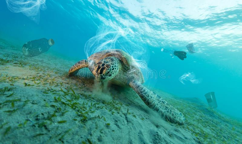 Underwater global problem with plastic rubbish stock photo