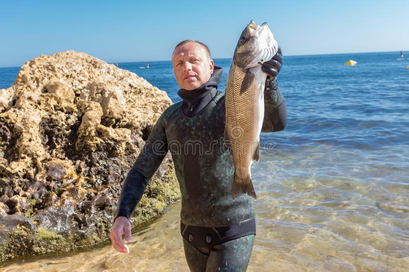 Underwater hunter shows catch. Portuguese robalo. Underwater hunter shows catch. Portuguese robalo in summer stock image