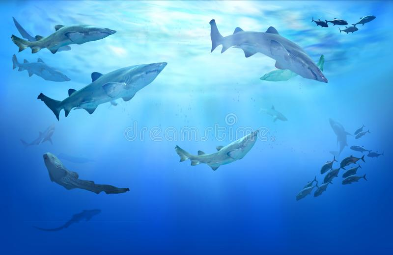 Life in tropical waters. Hunting sharks. Underwater life in the tropical sea. Hunting sharks in coastal waters. Shoal of fish royalty free illustration