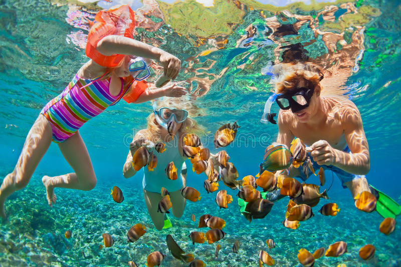 Underwater photo. Happy family snorkelling in tropical sea. Happy family - father, mother, child in snorkeling mask dive underwater with tropical fishes in coral stock image