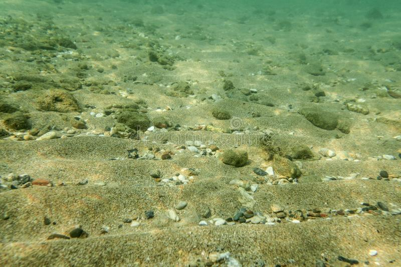 Underwater photo, sea bottom surface, sand with small rocks. Abstract marine background stock image