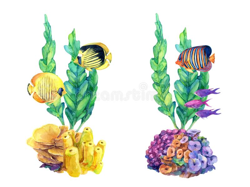 Underwater set of different compositions with coral reefs and tropical fish. Hand painted in watercolor vector illustration