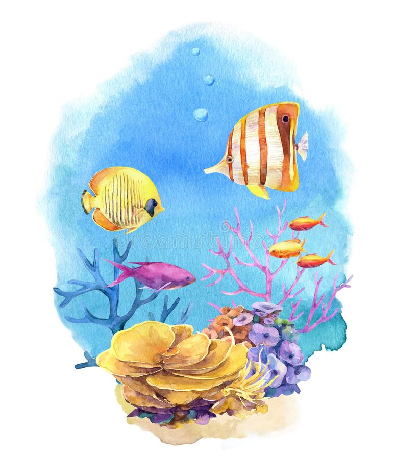 Underwater set of different compositions with coral reefs and tropical fish. Hand painted in watercolor royalty free illustration