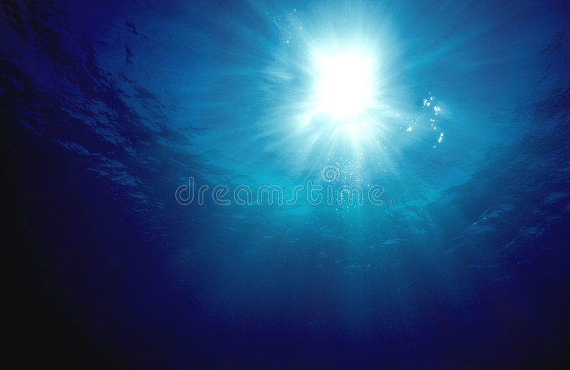 Underwater Sunshine. Looking towards the sun through the crystal clear water while scuba diving