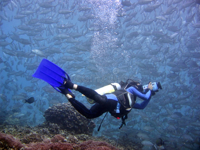 Underwater Videographer royalty free stock photography