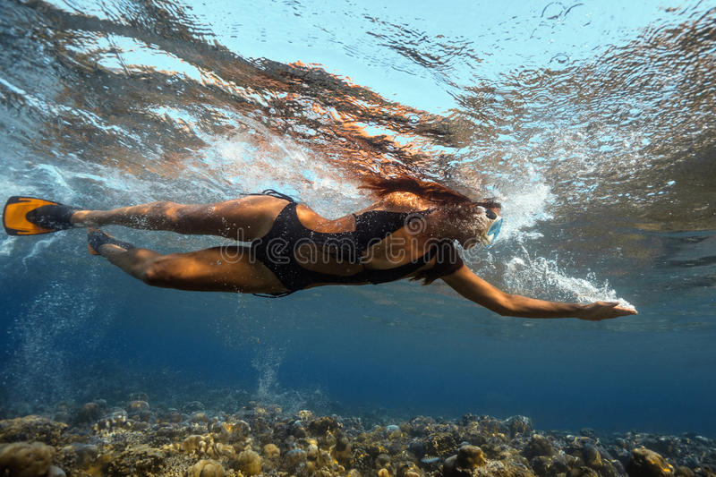 Underwater View royalty free stock photography