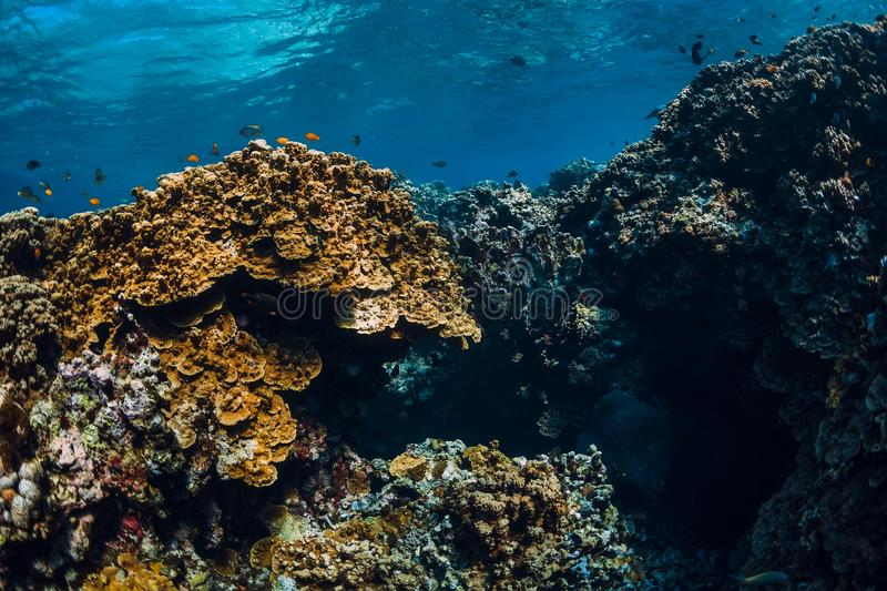 Underwater view with rocks and corals in blue ocean. Menjangan island. Bali stock photography