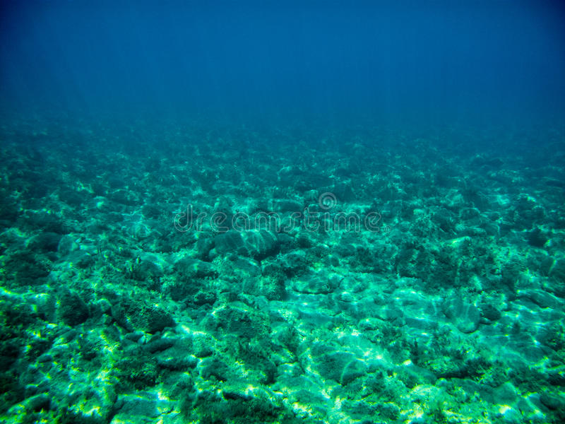 Underwater. View swimming in the sea stock photo