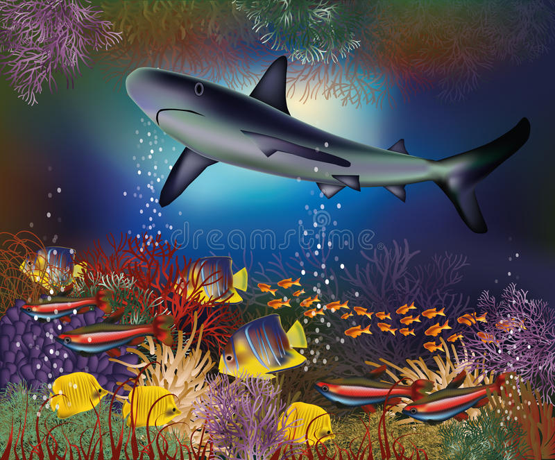 Underwater wallpaper with shark royalty free illustration
