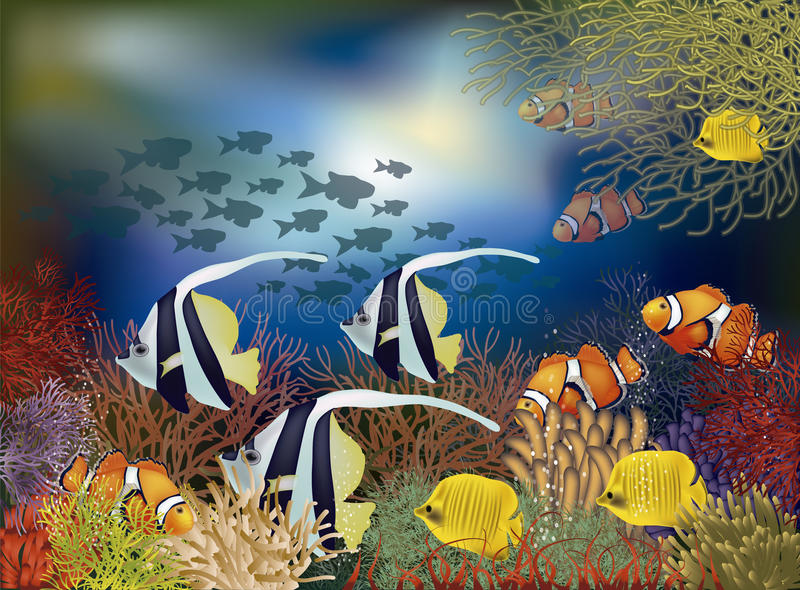 Underwater wallpaper with tropical fish, vector stock illustration
