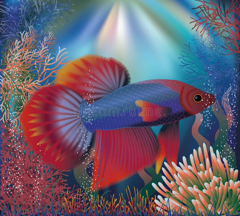 Underwater wallpaper with tropical well fish, vector royalty free illustration