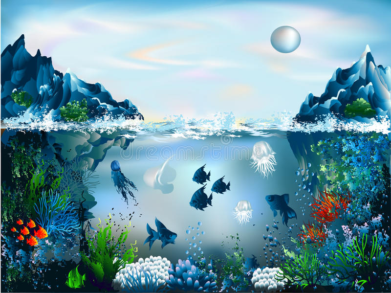 Underwater World. The underwater world of fish and plants