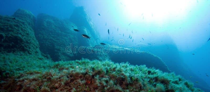 The underwater world stock photography