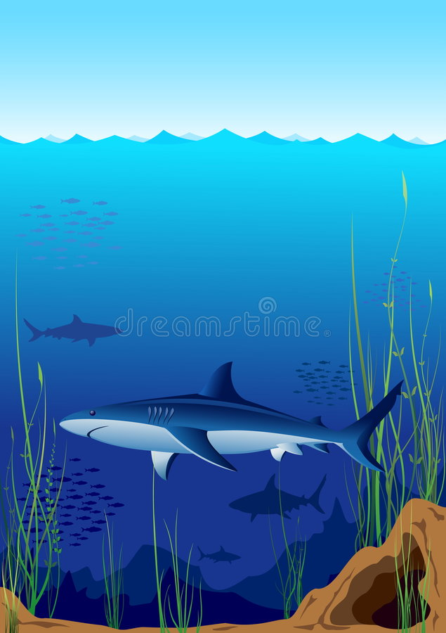 Download Underwater world stock vector. Image of dangerous, aggression - 7290281