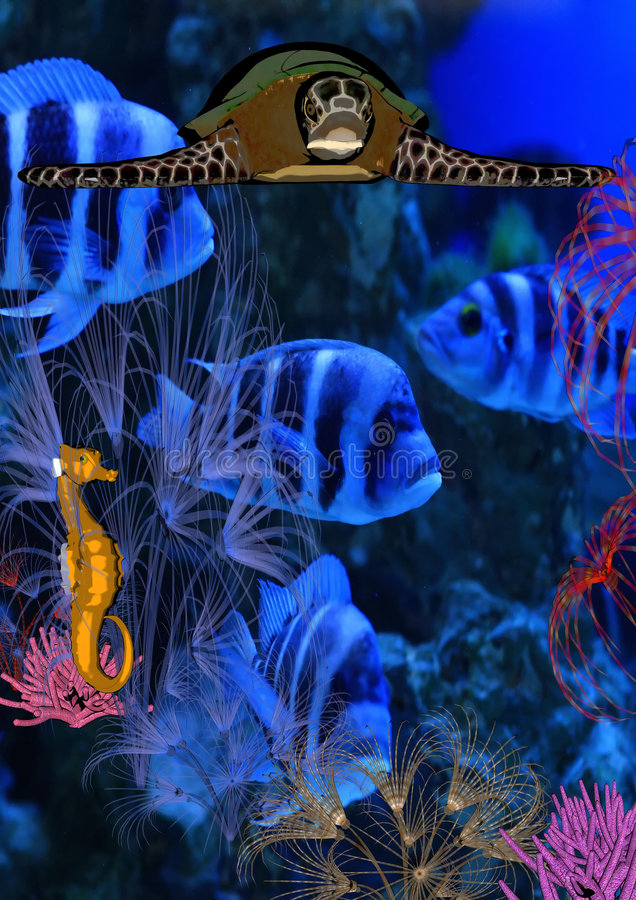 Download Underwater world stock illustration. Image of creature - 8559470