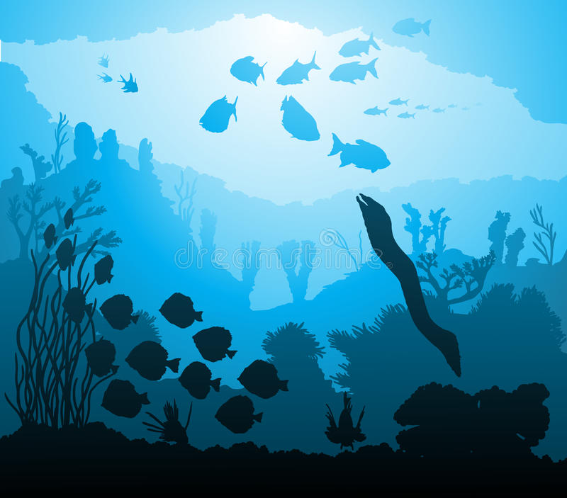 Underwater world with marine life stock photography