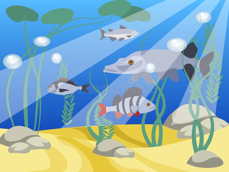 Underwater world, a reservoir. Animals and nature of the lake. In minimalist style Cartoon flat vector. Illustration vector illustration