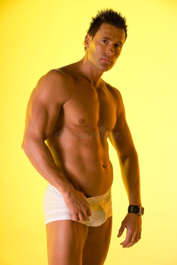 Underwear model. stock photos