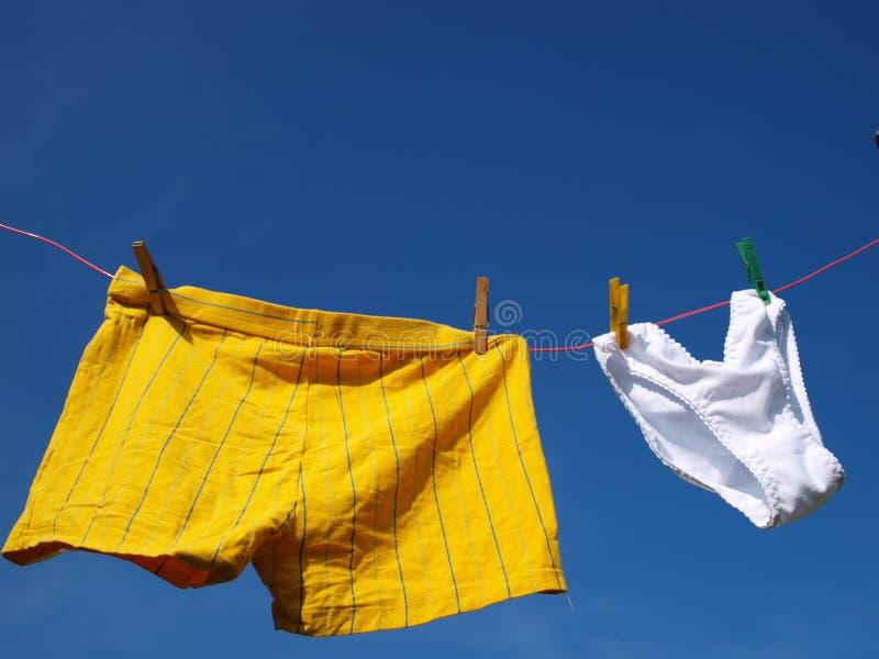 Underwears image libre de droits
