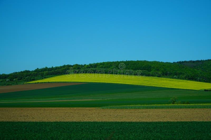 Undeutliche Landschaft in der Bewegung lizenzfreie stockfotografie