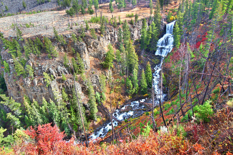 Undine Falls Yellowstone National Park fotografie stock libere da diritti