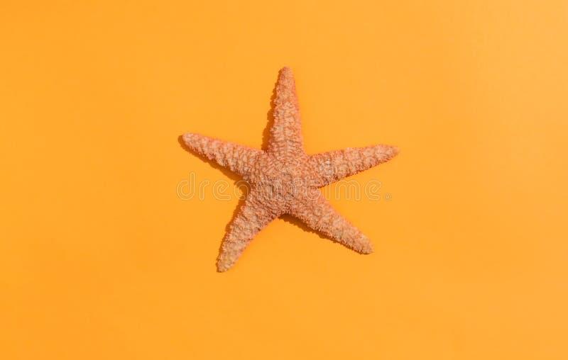 Une étoile de mer sur le papier orange photo stock