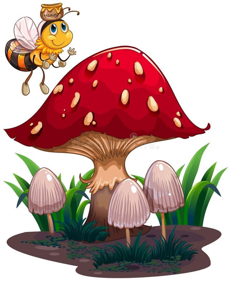 Une abeille avec un vol de miel près du champignon rouge illustration stock