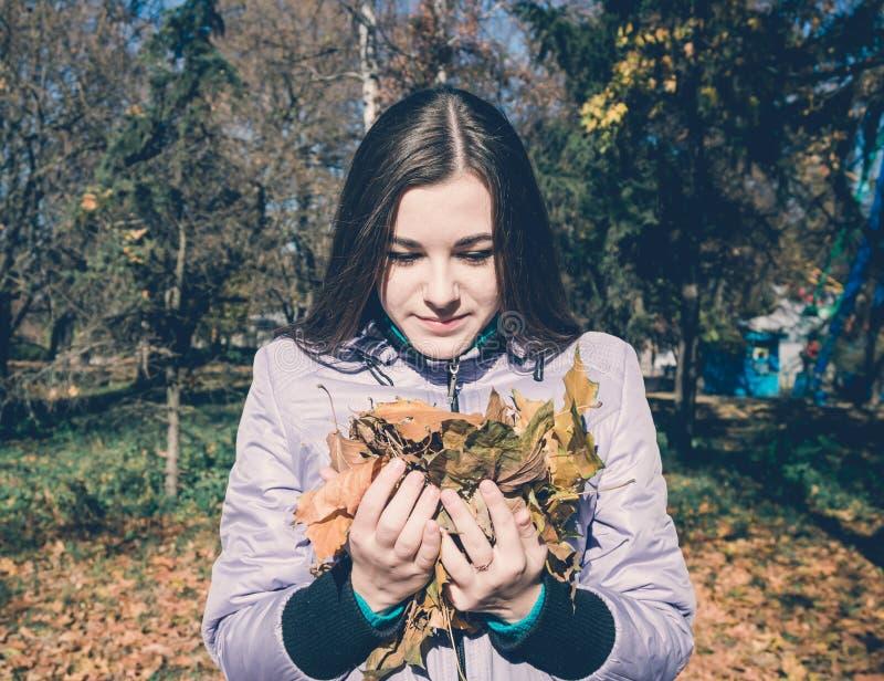 Une adolescente et un groupe de feuilles jaunes d'érable photos libres de droits