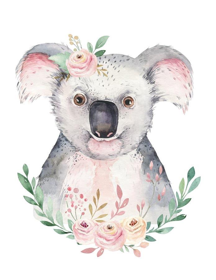 Une affiche avec un koala Illustration animale tropicale de koala de bande dessinée d'aquarelle Copie exotique d'?t? de jungle photos stock