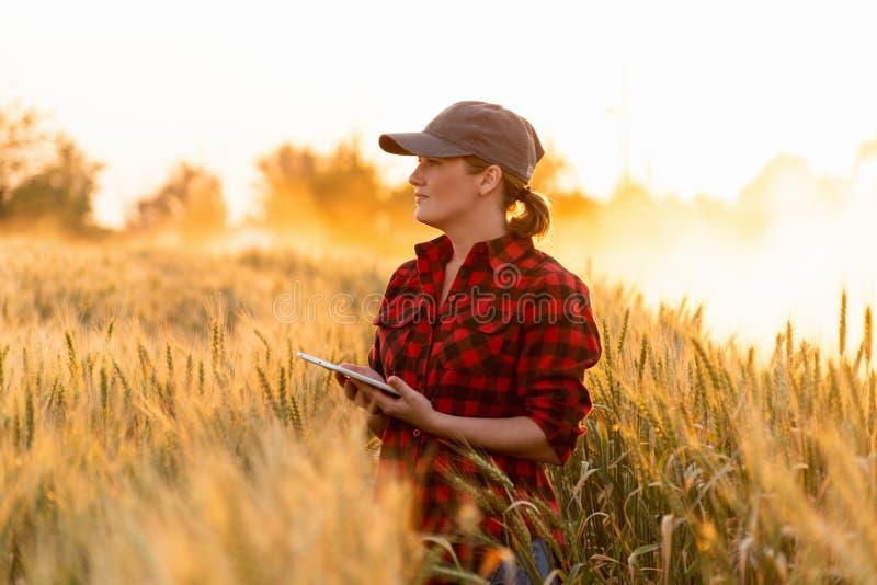 Une agricultrice avec le comprimé image stock