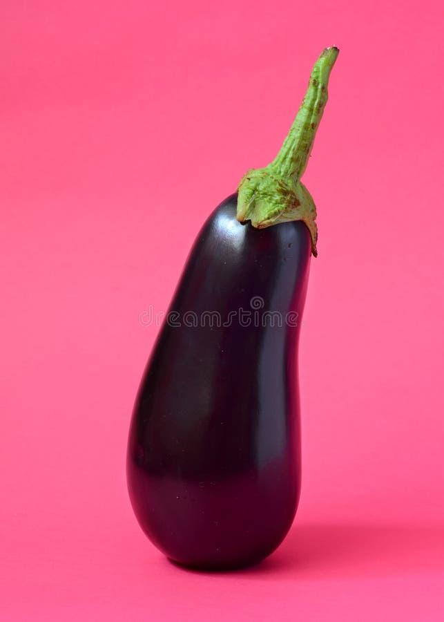 Une aubergine fraîche photographie stock libre de droits