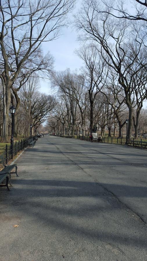 Une balade en parc images stock