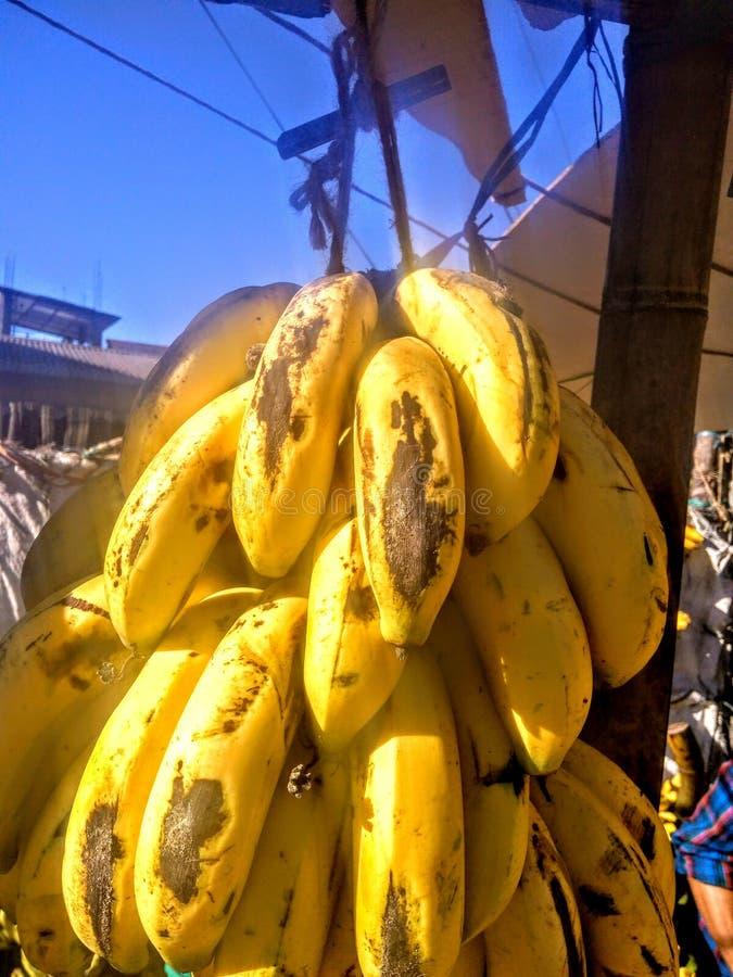 Une banane mûre est un type de fruits photos stock