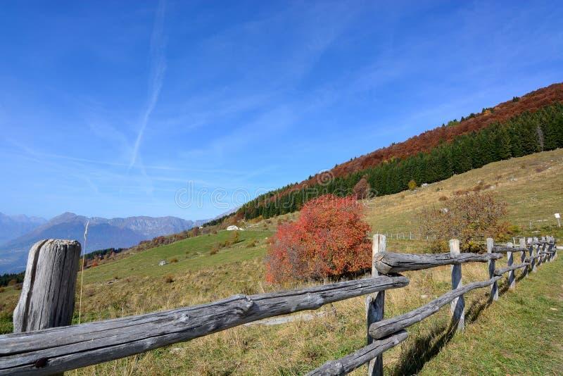 Une barrière dans les hautes montagnes avec des arbres maintenant dans les couleurs de l'automne photo libre de droits