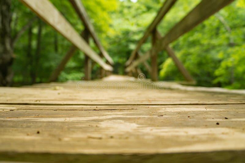 Une basse vue d'une passerelle de randonneur le long de la traînée appalachienne - 2 image libre de droits