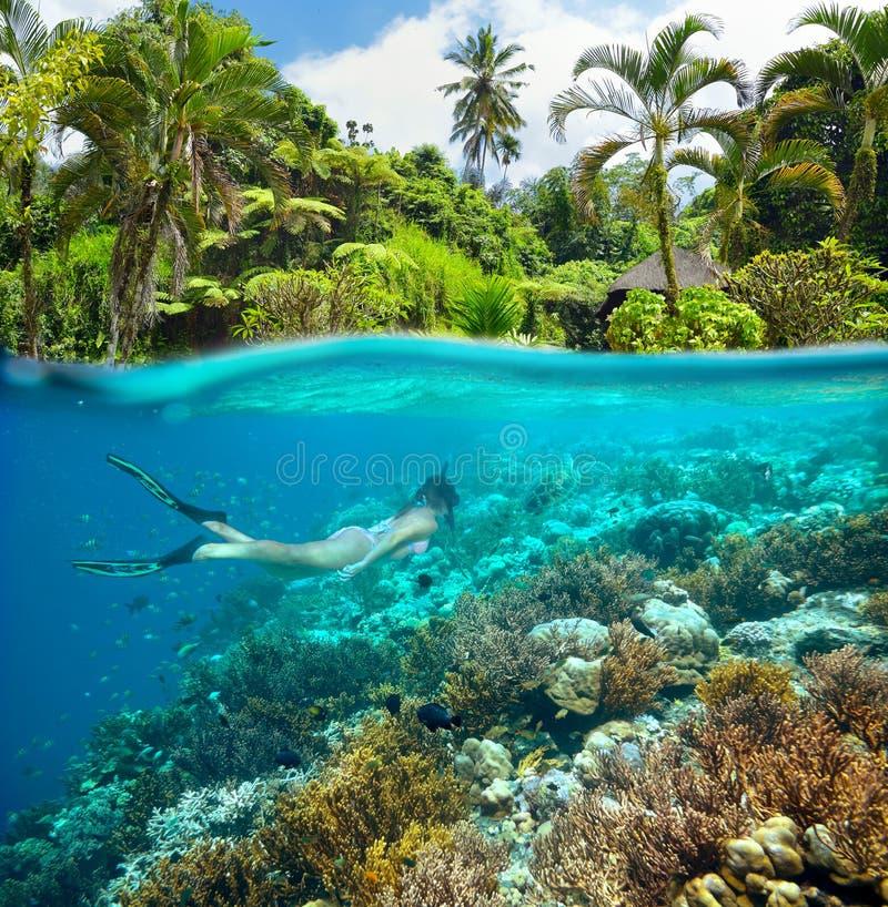 Une belle fille navigue au schnorchel en mer complètement des récifs coraliens stupéfiants photographie stock