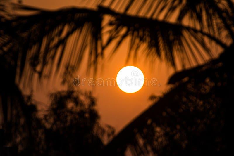 Une belle hausse d'or de coucher du soleil/soleil image stock