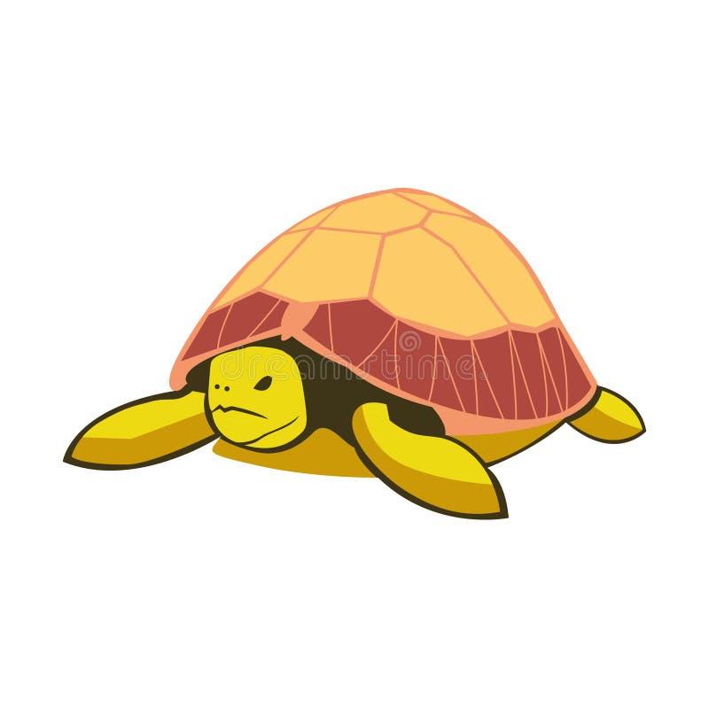 Une belle tortue, une écaille illustration stock
