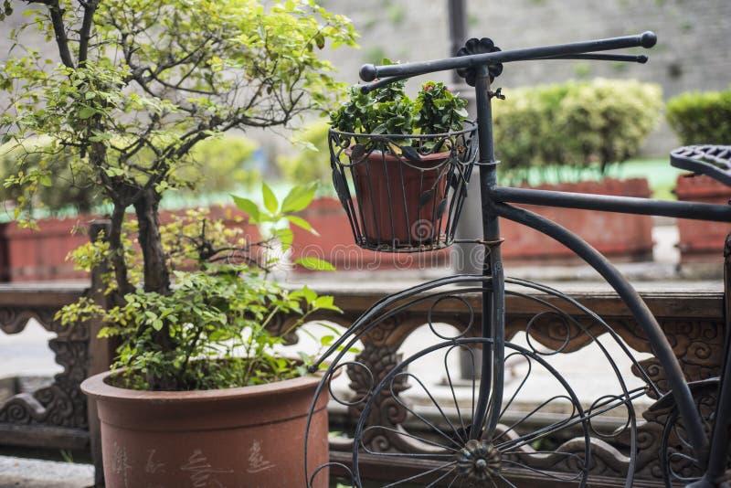 Une bicyclette de cru placée à côté du lit de fleur photographie stock