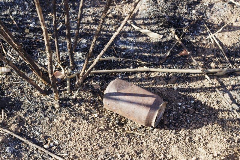 Une boîte de soude après un incendie de forêt Dégradation environnementale image libre de droits