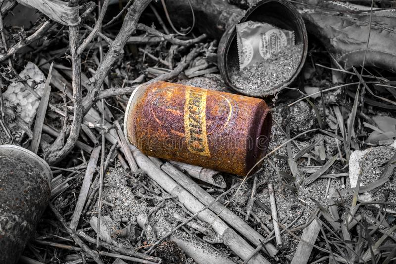 Une boîte rouillée à bière de Cruzcampo dans les bois photographie stock