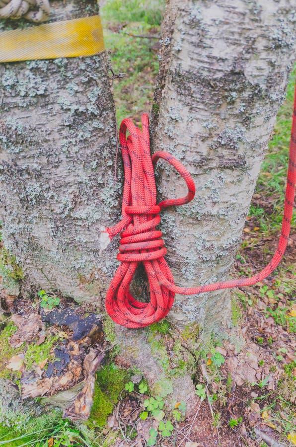 Download Une Bobine De Corde Rouge Pour L'assurance Sur Le Fond De Forêt Image stock - Image du crochet, trains: 76080259