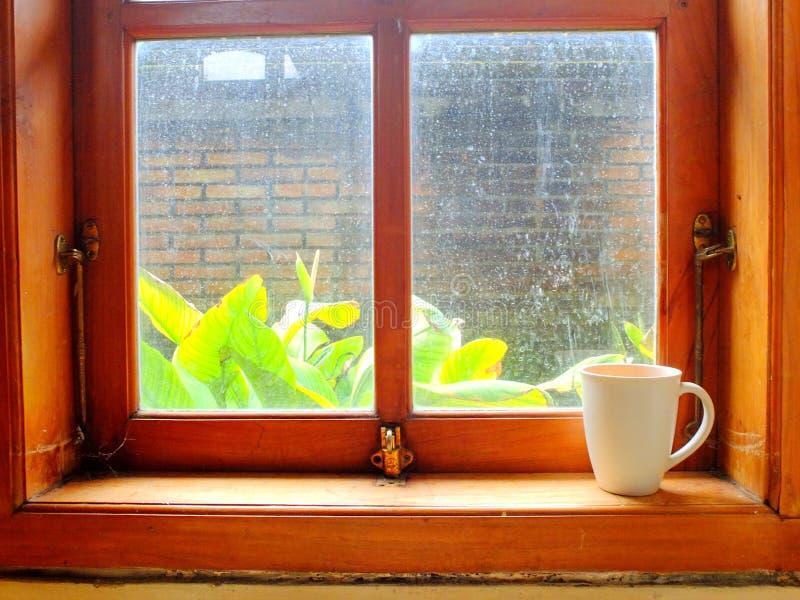Une boisson dans la tasse dans la fenêtre en bois dans le jour ensoleillé photo libre de droits
