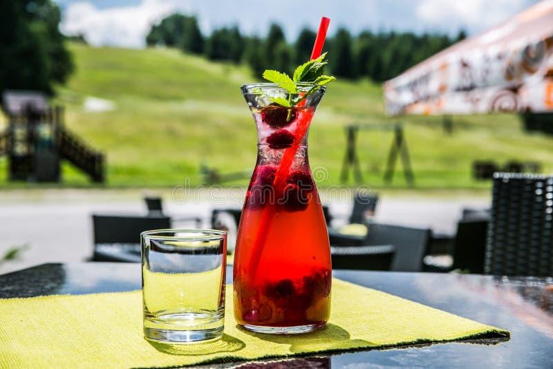 Une boisson glacée régénératrice d'agrume d'été photos libres de droits