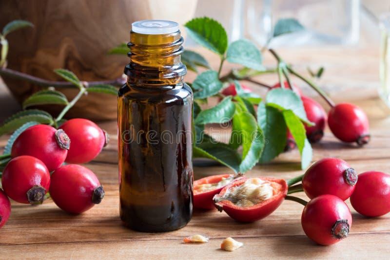 Une bouteille d'huile de graines de hanche rose sur une table en bois photographie stock