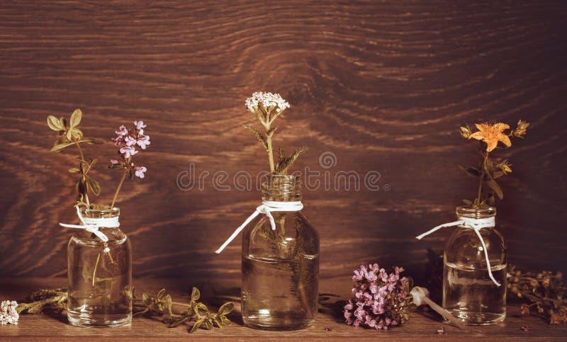 Une bouteille d'huile essentielle avec des herbes et des plantes médicinales, moût du ` s de St John, millefeuille, thym, ensembl photo stock